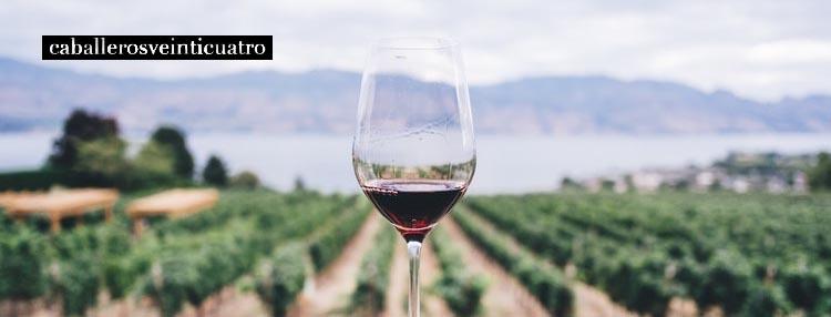 Etiquetado para vino Caballerosveinticuatro
